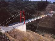 C0201 想い出の森吊橋-1