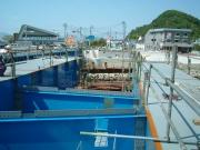 B1407 勝浦浜橋-3