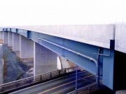 B1006 大洲高架橋-4