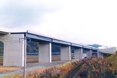 B1006 大洲高架橋-1