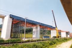 B1006 大洲高架橋-3