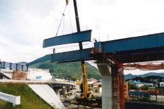 B1006 大洲高架橋-2