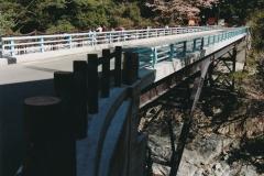 B6315 新祖谷渓大橋-1