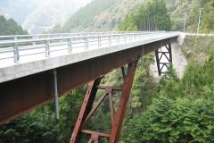 B1015 北路橋-2